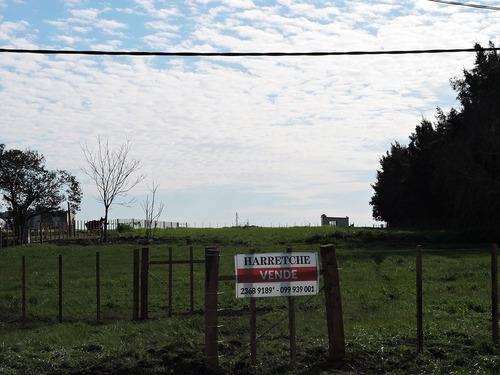 vendo terreno industrial  juanicó inmobiliaria harretche