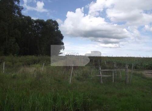 venta campo de 28 hectáreas ruta 8  inmobiliaria atlántida !