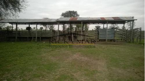 venta de campo ganadero con vivienda-ref:182 - ref: 182
