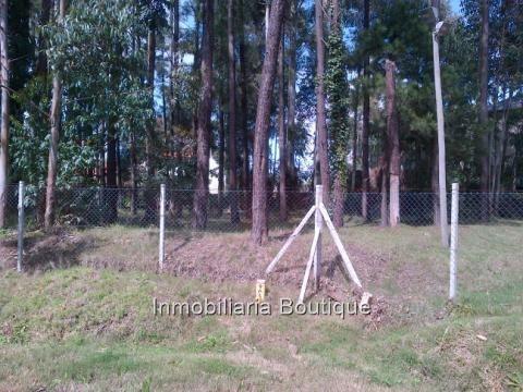 venta de terreno en quintas del bosque