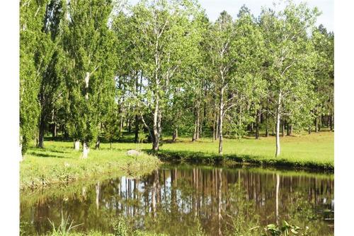 venta de terreno - lote en chacras del pinar