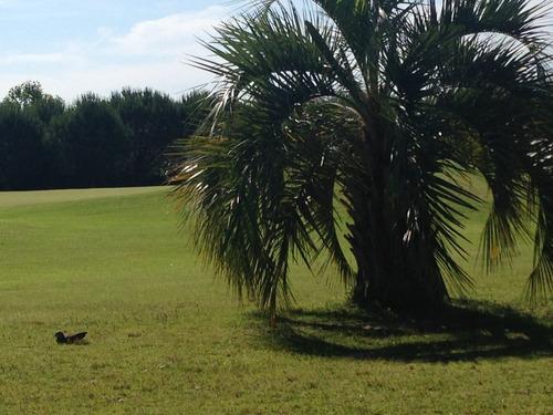 venta terreno altos de la tahona barrio privado canelones