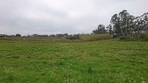 venta terreno campo punta espinillo 3 hectáreas financia