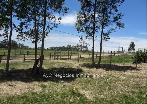 venta terreno chacras  viñedos de la tahona