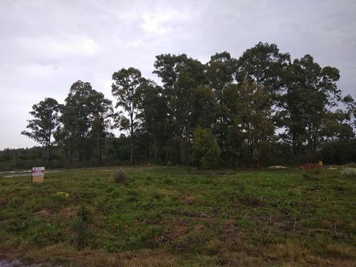 venta terreno colonia riachuelo